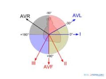 ECG - Fig 5 (axis)