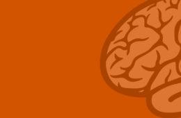 Neurology_Large_Right_Pumpkin