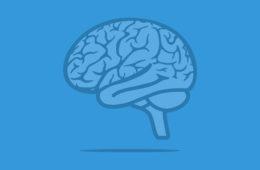 Neurology_Peter River